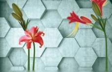 电视背景墙 3D花卉背景墙图片