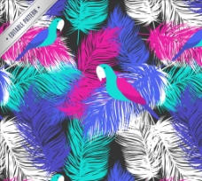 彩色羽毛 和鹦鹉无缝 背景图片