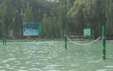 水上运动图片