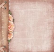 精美玫瑰花背景图片