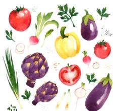 水彩蔬菜图片