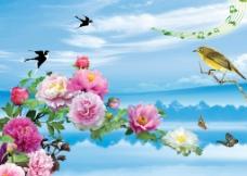 鸟语花香图片
