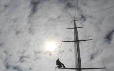 阳光下的帆杆图片