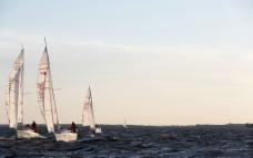 海面上的帆船图片