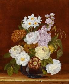美丽鲜花图片