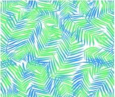 凤尾草散尾草椰叶花纹素材图片