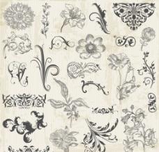 欧式花卉花纹图片