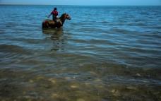 湖边牧马人图片