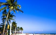 蓝天银滩椰树图片