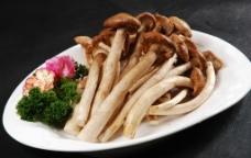 鲜茶树菇图片
