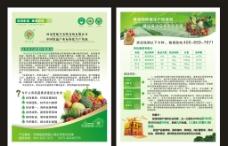 绿色有机蔬菜单页图片