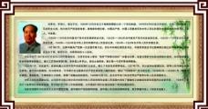 毛泽东简介图片