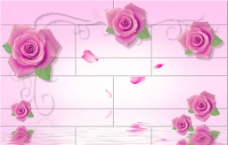 玫瑰水影 (分层图)图片