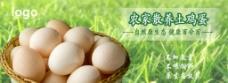 鸡蛋海报图片