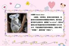 小学生 动物卡片图片