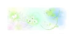 矢量花卉图片