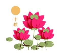 中秋-莲图片