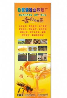 自然源蜂业养殖厂图片