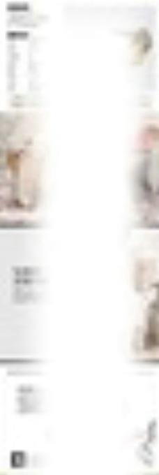 淘宝天猫女鞋详情页PSD模板图片