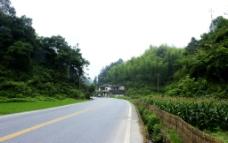 村边公路图片