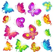 各种各样的蝴蝶图片