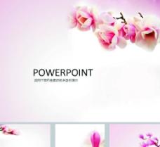 鲜花PPT