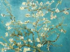 梵高 杏花图片