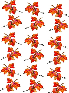波普树叶花纹图片