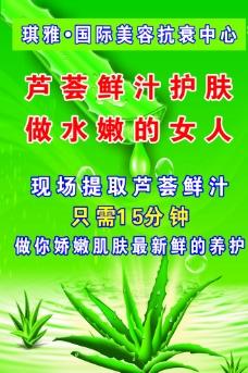 芦荟展板图片
