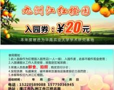 九洲江红橙园图片