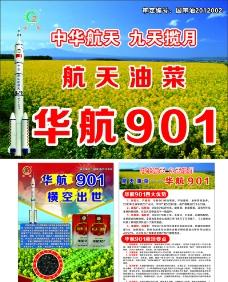 华航901宣传页图片