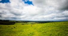 澳洲田野图片