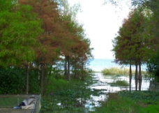 风景洱海图片