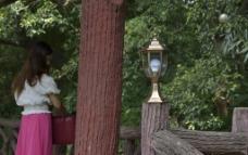 园林别墅灯饰图片