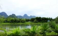 琴潭周边绿化图片