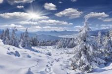 冬天冰雪图片