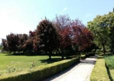 景观路图片