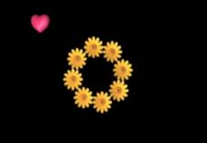 向日葵背景视频