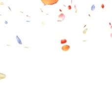 花瓣雨动态视频