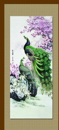 孔雀图图片