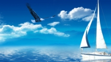 老鹰在蓝天翱翔图片