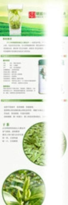 绿茶详情图片
