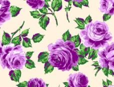 玫瑰花 面料花型图片