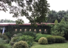 中国茶叶博物馆图片