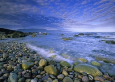 迷人的河岸風景图片