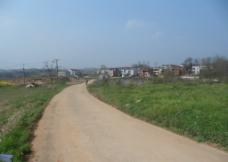 乡村道路图片