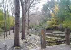 秋日公园 落日图片