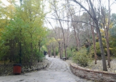 秋日 公园图片