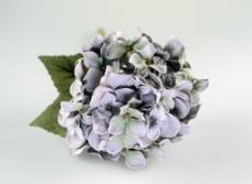 塑胶花卉 花瓣 花团图片