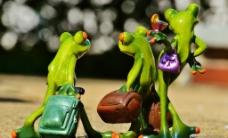 创意青蛙图片